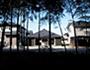 竹林の見える家